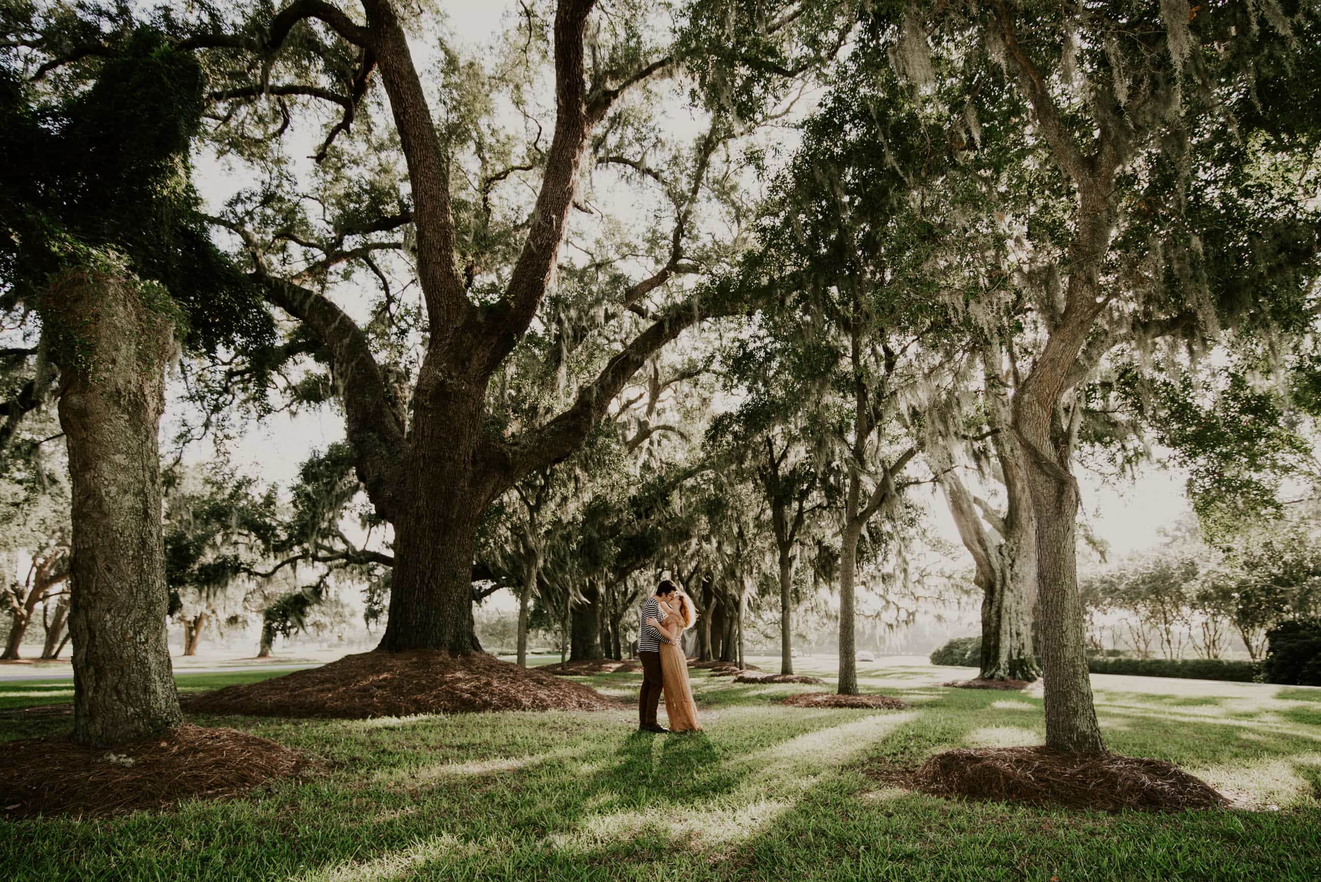 Avenue of the Oaks engagement session