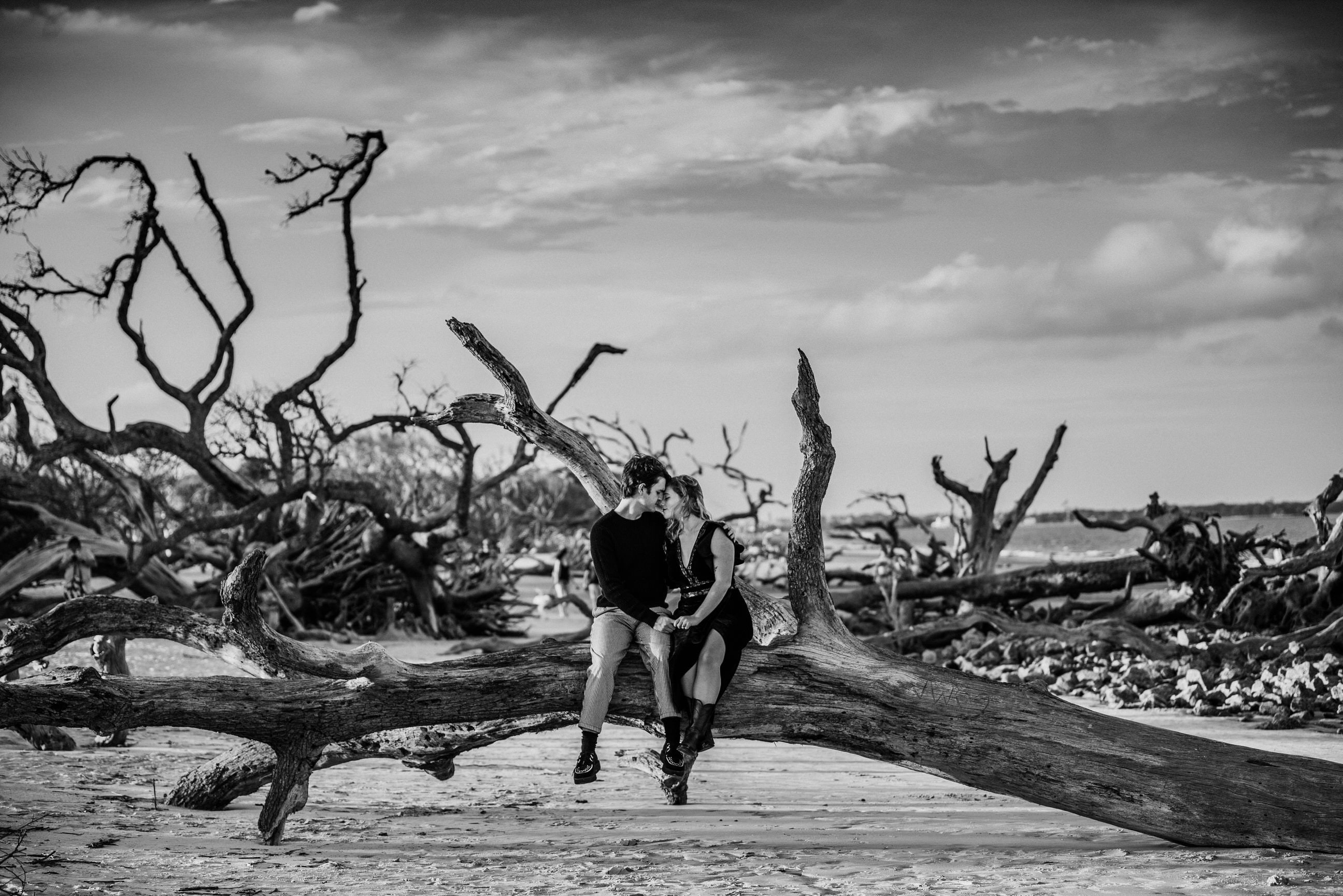 Couple embracing in black and white on driftwood beach
